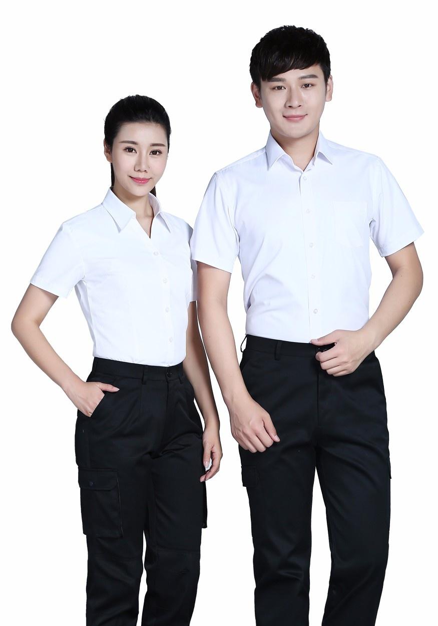 2019新款白色商务V领短袖衬衫